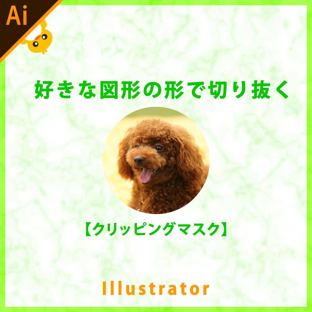 Illustrator(イラレ)好きな図形で画像を切り抜く方法【クリッピングマスク】