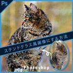 Photoshopステンドグラス風画像作成【フィルター>ピクセレート>水晶】
