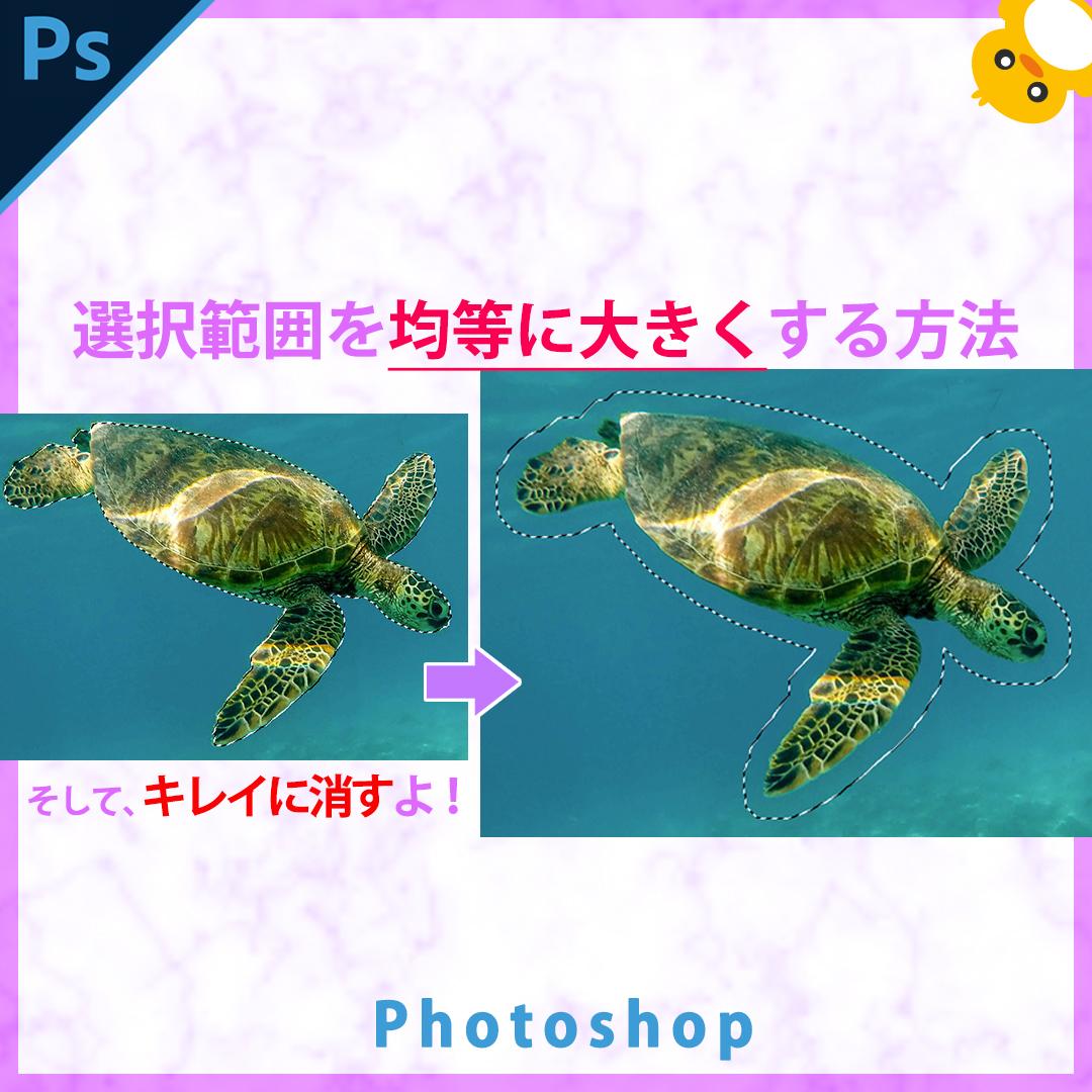 Photoshop選択範囲を均等に大きくする方法ー【そして対象物をキレイに消す】