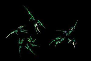"""<h3> Apophysis: Galería de imágenes fractales</h3>    <a href=""""https://piziadas.com/2011/09/apophysis-galeria-de-imagenes.html"""">Apophysis-110911-22</a>"""