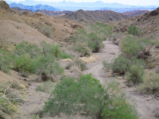 The view down Indian Pass, toward the Rio Colorado. The hills/mountains in the distance, are in the Yuma Proving Grounds, in Arizona.