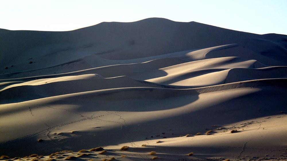 The morning sun reveals critter tracks on the dunes.