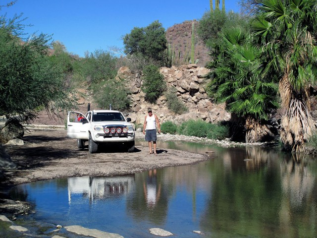On the way back from San Javier, we stopped to visit an oasis which had a few old Indian petroglyphs.