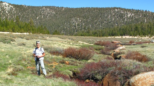 Looking for marmots in Horsehoe Meadows. The Meadows were a proposed location for a Disney ski area, but when the Wilderness Act came into existence in 1964, and the resort concept was abandoned.