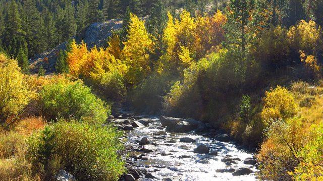 Rock Creek both fills and drains Rock Creek Lake.