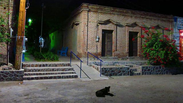 A small tienda on Benito Juárez under a dog's watchful eye.