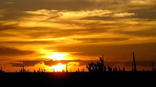 Sunset, south of San Ignacio.