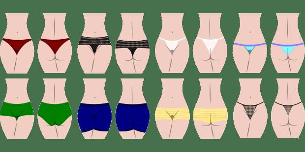 panties, bloomers, full coverage, bikini, high cuts, underwear