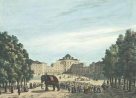 Enrico Gonin - Litografia - Castello di Stupinigi con l'elefante Fritz (1836) - Archivio storico della Città di Torino