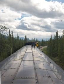 Train to Denali-2