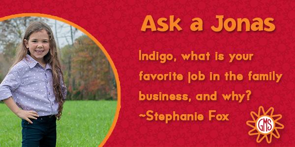 Ask a Jonas-indigo_favorite job_blog