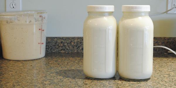 goat milk yogurt_blog_13