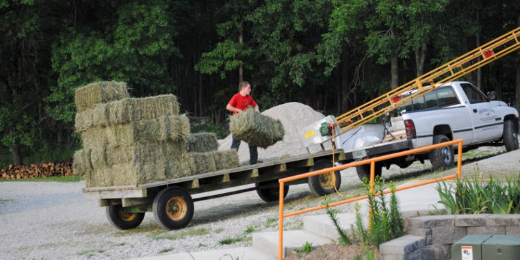 putting up hay_3