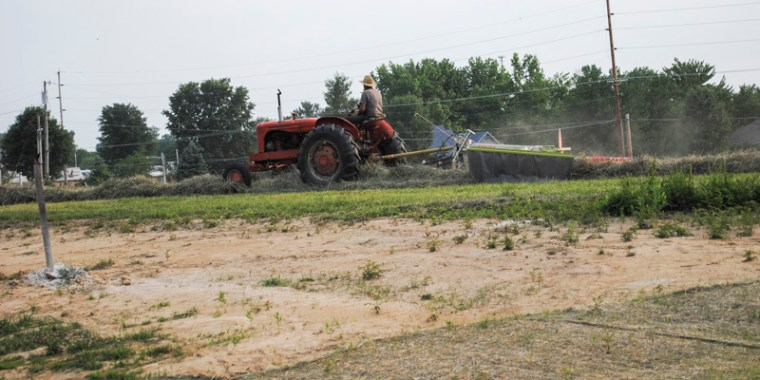 putting up hay_5