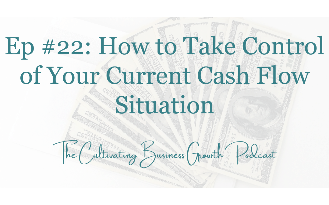 #22: How to Take Control of Your Current Cash Flow Situation