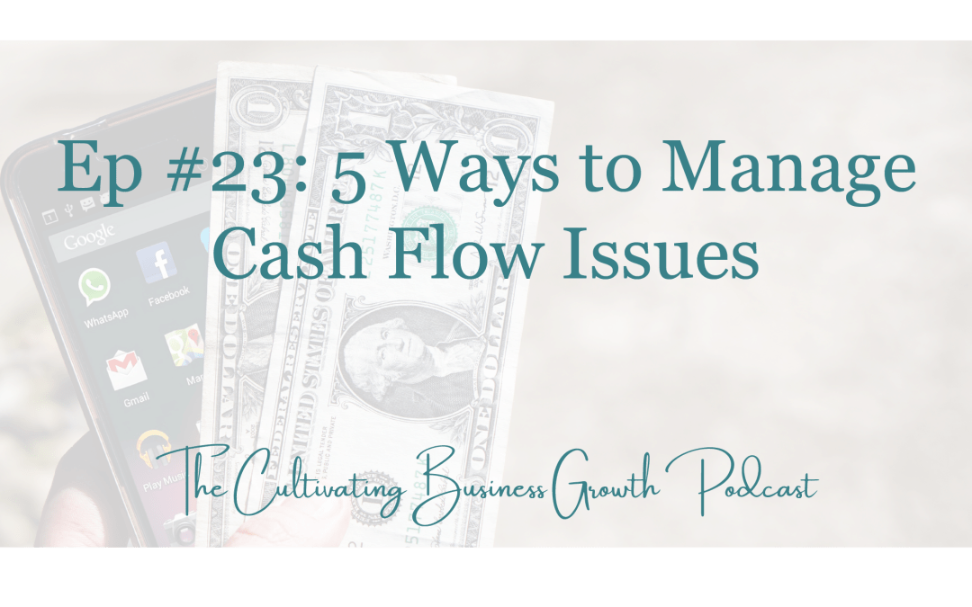 5 Ways to Manage Cash Flow Issues