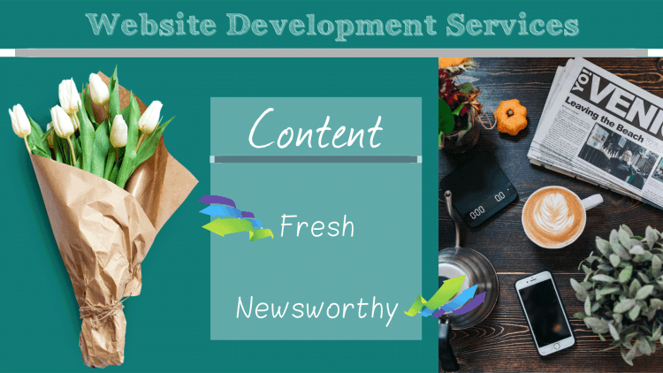 views by audience and testimonials by visitors regarding website development services