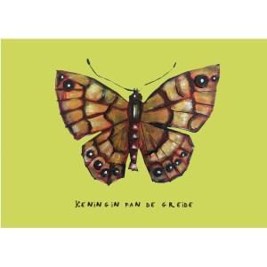 vlinder, insect, argusvlinder, koningin fan de greide
