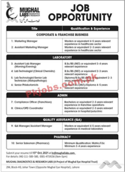 Jobs In Mughal Labs
