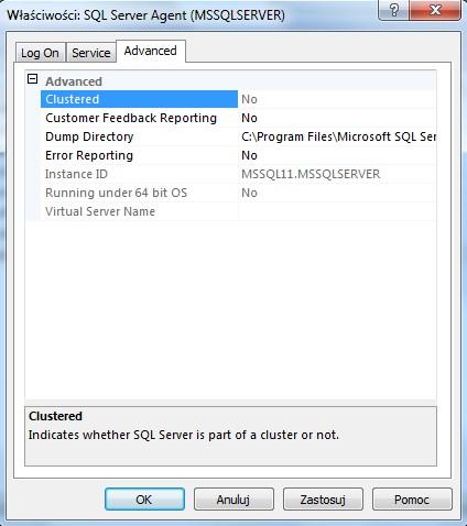 service-manage-dialog-box-advance-tab
