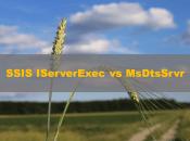 SSIS IServerExec vs MsDtsSrvr