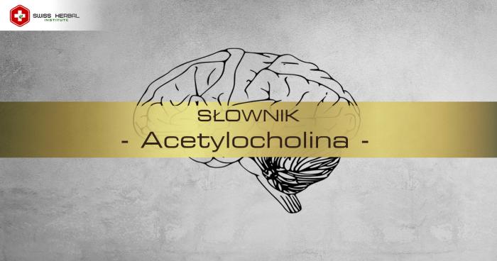 Acetylocholina - definicja