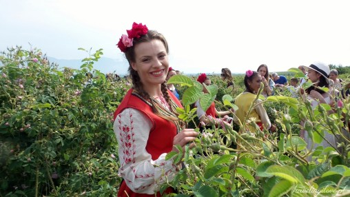 Festiwal Róż w Bułgarii.