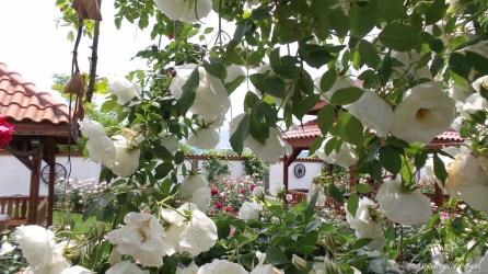 Festiwal Róż w Bułgarii. Kompleks etnograficzny Damascena