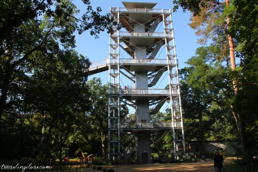 Beelitz Heilstätten wieża widokowa Baum und Zeit