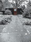 Lichaam in de tuin