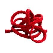 Logo Boeddhistisch Dagblad