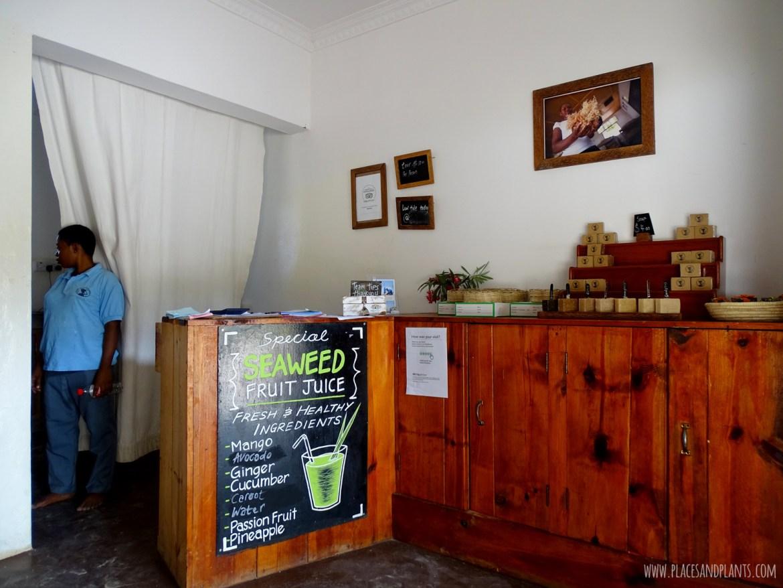 wegański Zanzibar sea weed center