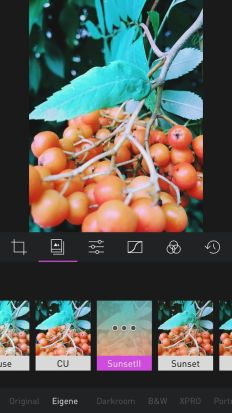 Darkroom photo app screenshot