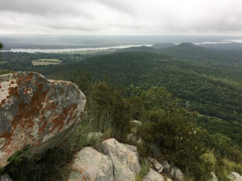 The Arkansas River from the top of Pinnacle Mountain.
