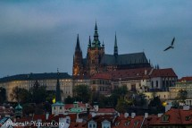 Prague-8851