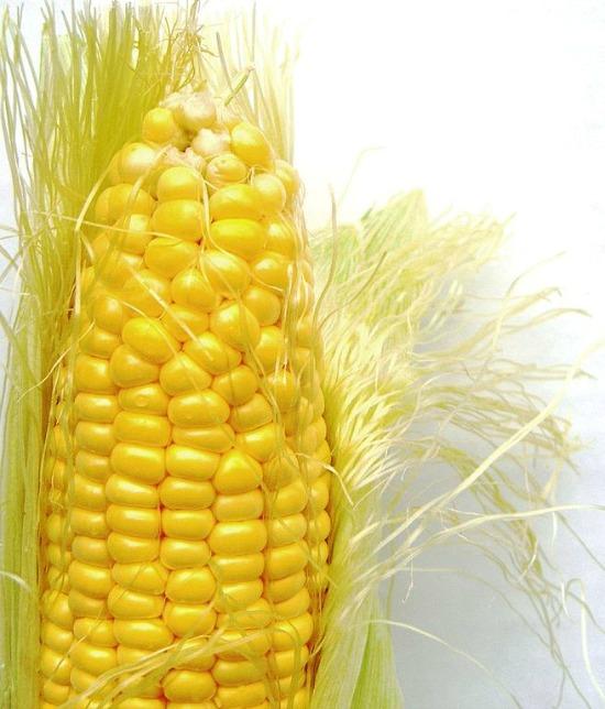 656px-Corn_on_the_cob