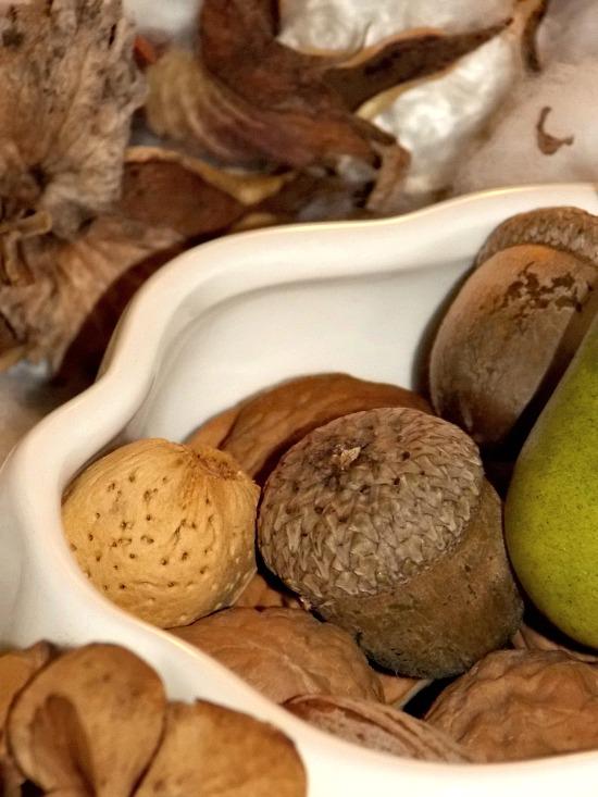 acorns3