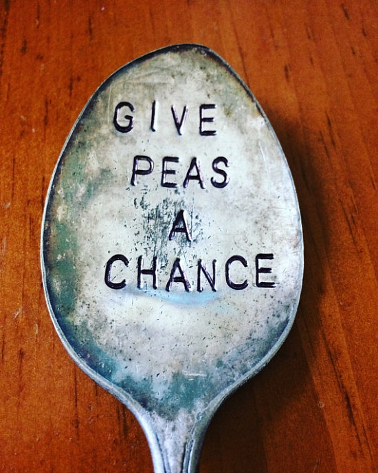 give-peas-a-chance-garden-marker