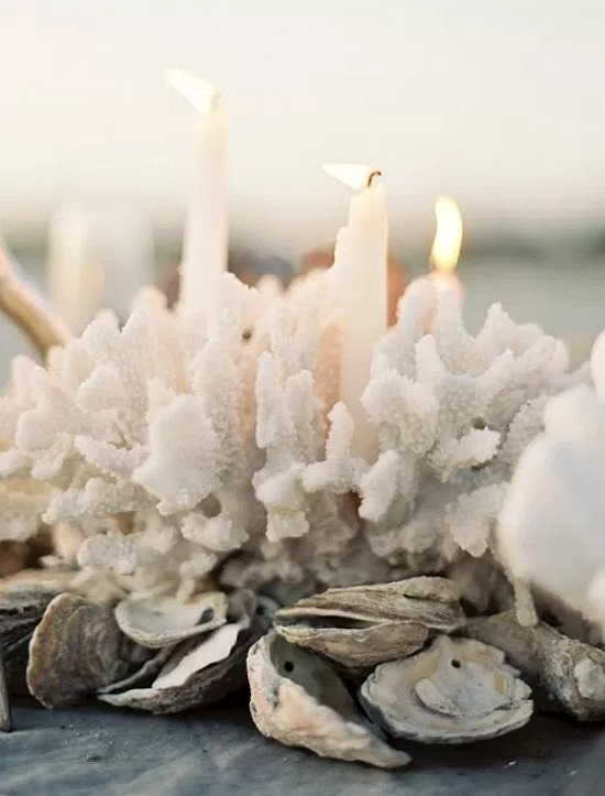 candles-coral-oyster-shells