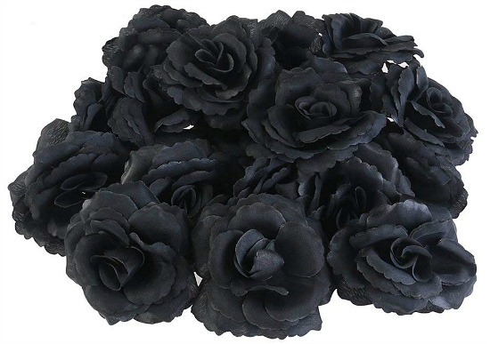 black-rose-flower-heads