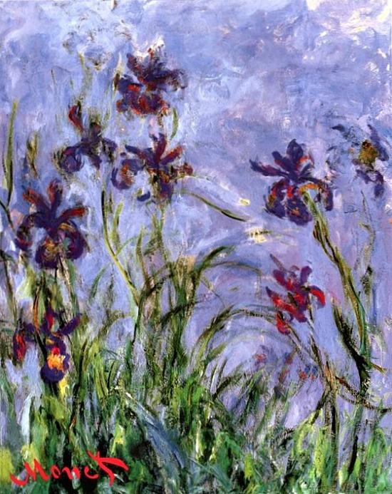 Irises By Claude Monet