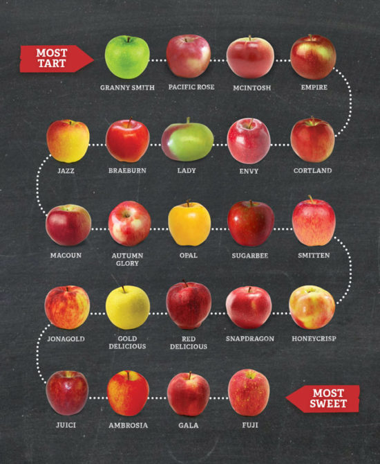 types of apples graphic