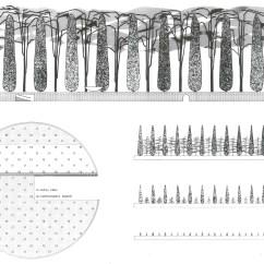 Oma Parc De La Villette Diagram 2001 Ford Expedition Eddie Bauer Fuse Box Ecology And Design Parallel Genealogies Dynamique Et L Echelle Du Temps Parterre A Foret Paris France 1983 1985