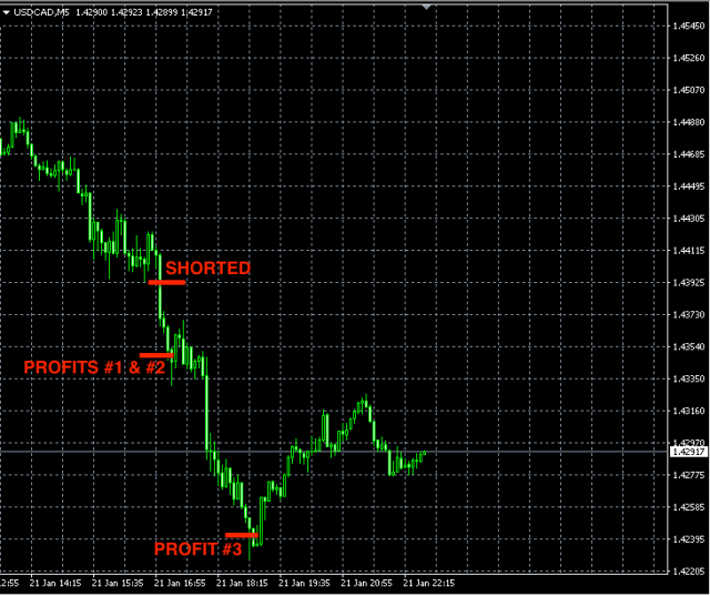 Best forex signals USDCAD jan21