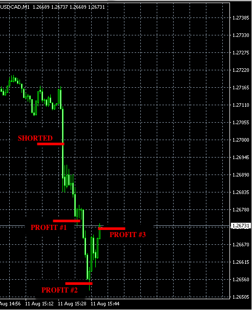 best forex signals aug11
