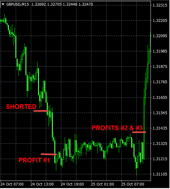 best forex signals oct24