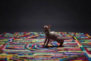 content_plain-magazine-nightshop-foam-carpet-01