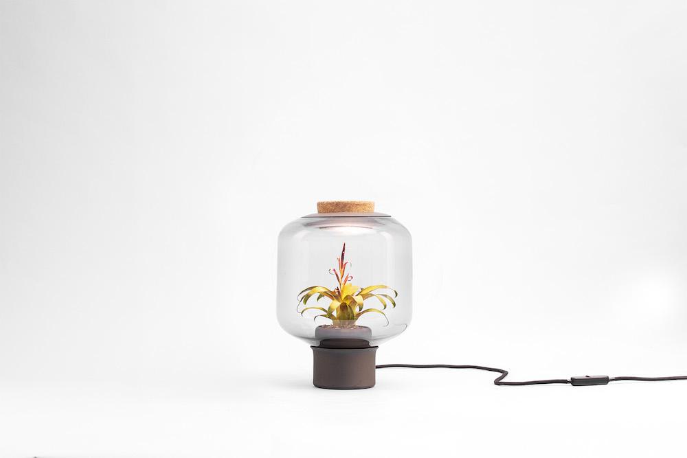 content_plain-magazine-plant-lamp-04