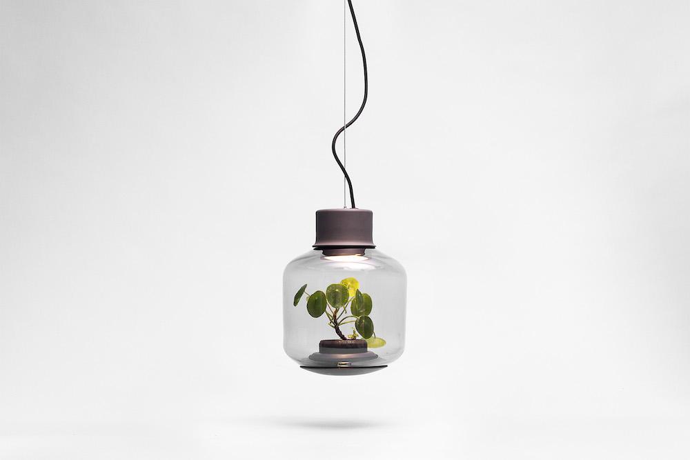 content_plain-magazine-plant-lamp-06