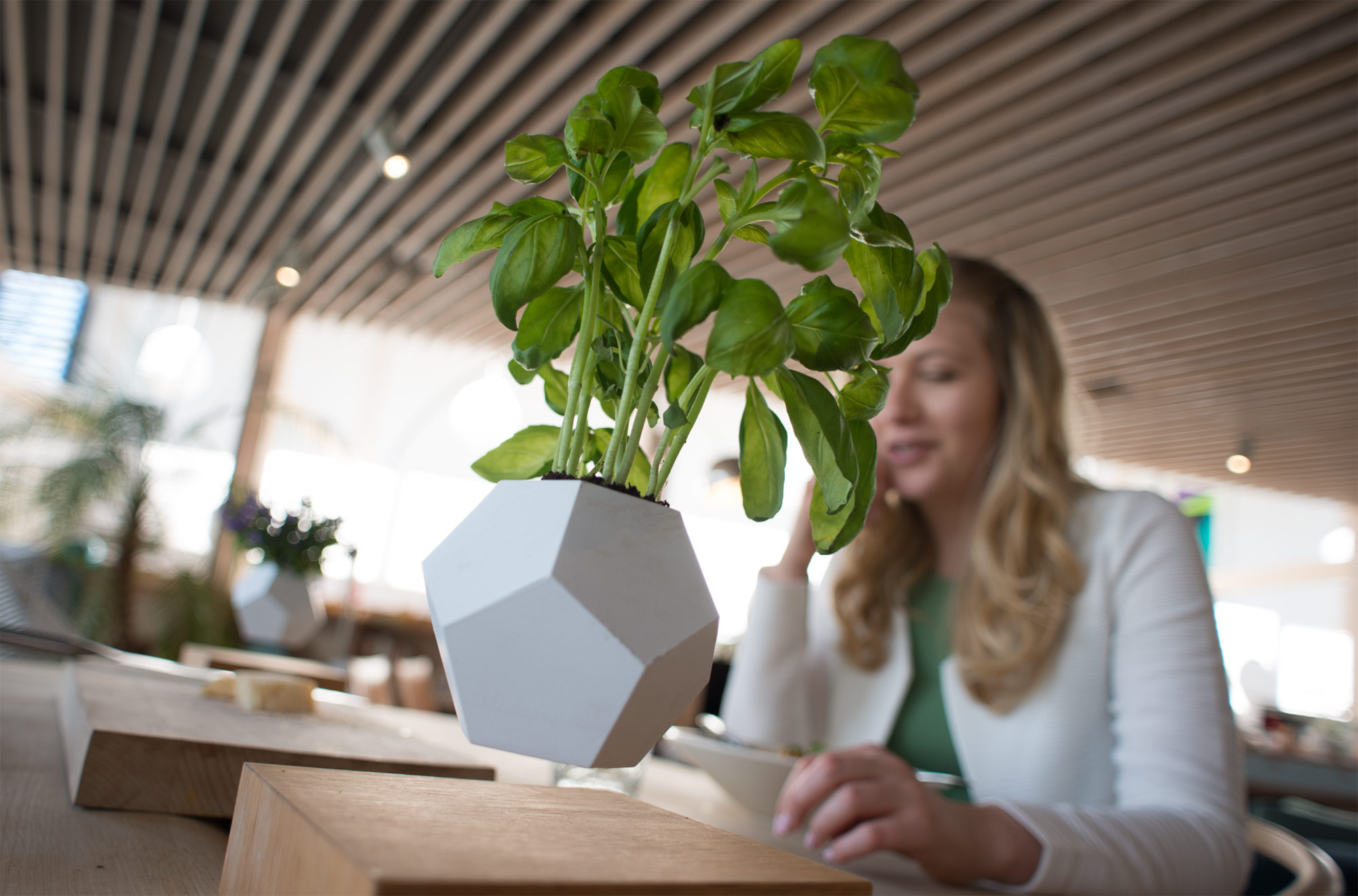 Flyte Floating Plant